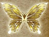 道具光化蝴蝶