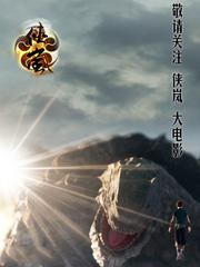 侠岚大电影