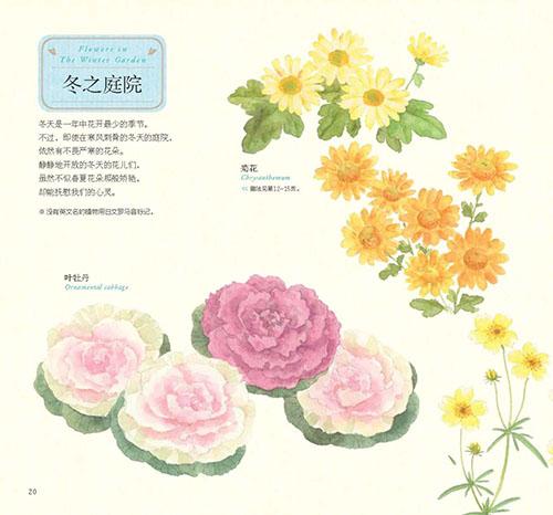 中青社推出水彩花卉绘画书《幸福四季水彩花园》