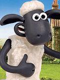 小羊肖恩冠军羊第1集