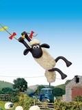 小羊肖恩冠军羊