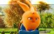 开心兔全集第17集