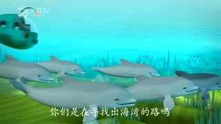 海底小纵队第四季第19集