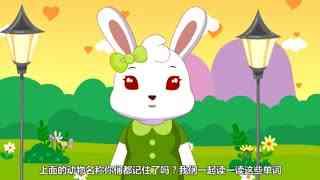 兔小贝英语宝典第8集