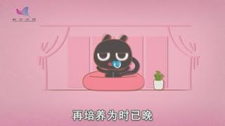 科普中国之焦糖猫第14集