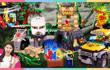 凯利和玩具朋友们 第345集 乐高世界丛林探险记