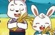 兔小贝儿歌大全第13集