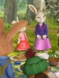 比得兔第19集